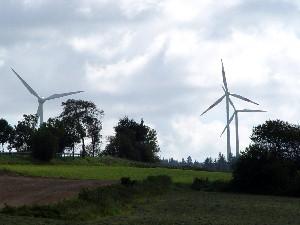 Genossenschaften im Bereich erneuerbare Energien stark im Aufwind (Foto: Wilfried J. Klein)